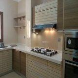 Gabinete de cozinha novo do estilo de Austrália do projeto