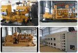 Hacer la planta del biogás, generador del biogás/central eléctrica del biogás CHP/Biogas