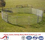 comitati usati resistenti del bestiame di 5ftx12FT/comitati americani del Corral del bestiame