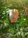 Piante di alta qualità e fiori artificiali della parete verde Gu-Wall009087110