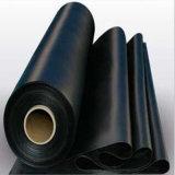 HDPE Geomembrane per i materiali di riporto