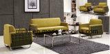 Sofà elegante del cuoio di zona dell'ufficio o dell'ingresso o del salotto (NS-S403)