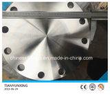 造られたJIS B2220 S31803 Deplexのステンレス鋼のブランクフランジ