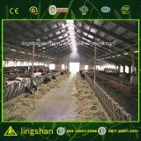 O ISO pré-fabricou a vertente de aço clara da exploração agrícola da vaca do baixo custo