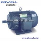 220V 1430 분당 회전수 AC 전동기 유동 전동기