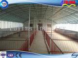 Vorfabriziertes helles Stahlkonstruktion-Huhn/Geflügel bringen für Bauernhof unter