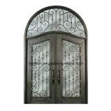 Schönes Puder-überzogene Eintrag-Tür-bearbeitetes Eisen-Türen