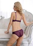 Шнурок Panty повелительниц конкурентоспособной цены высокого качества и бюстгальтер