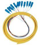 Extérieur imperméabiliser le tresse optique de fibre de 12 faisceaux avec le connecteur de rue de FC de Sc LC