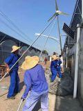 중국제 재생 가능 에너지 작은 바람 터빈 발전기 태양 전지판