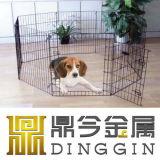 Großhandelsmaschendraht-Haustier-Zaun