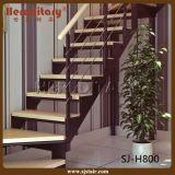 Modern Curved Rod Railing Steel Wood Straight Staircase (SJ-H816)