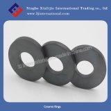 Ferrite Magnets/Ceramic Rings (XLJ-1110)