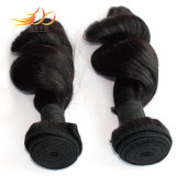 I capelli malesi del Virgin collegano le trame allentate dei capelli di alta qualità dell'onda