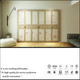 높은 광택 있는 여닫이 문 옷장 (ZH0053)