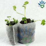 O controle da raiz tecido não cresce o saco para jardinar