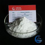 Clobetasol Propionate 스테로이드 분말 중국 항염증제 공급자
