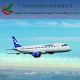 [فريغت فوروردر] من الصين [غنغزهوو] برّ رئيسيّ إلى بلجيكا