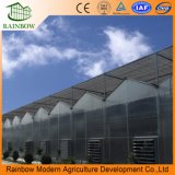 Polycarbonat-Tunnel-Gewächshaus für Agricultrual beenden
