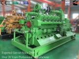 Het aardgas die van de Norm van ISO van Ce 10-1000kw de Elektrische centrale van de Reeks produceren/Elektriciteit