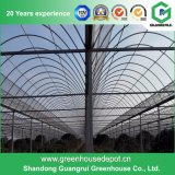 야채 또는 정원 또는 꽃 또는 농장 플레스틱 필름 녹색 집