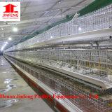 matériel de ferme avicole de cage de poulet d'A pour le poulet de couche de Chine