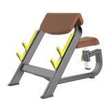 Gimnasio Fitness Equipment Equipo de comercio asentado Predicador Curl