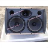 Des PA-HK210 Tonanlage Lautsprecher-Doppelfachmann-10inch