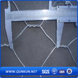 Acoplamiento de alambre hexagonal de la malla del acero inoxidable 0.3mm X30m m en venta