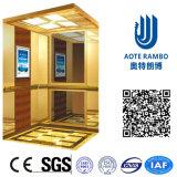 Aote Vvvf profissional conduz para casa o elevador da casa de campo (RLS-252)