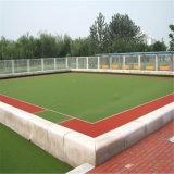 Трава конструкции высокия стандарта Eco-Friendly искусственная