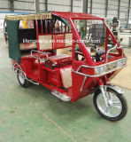 熱い販売のインドの市場のための電気乗客の人力車
