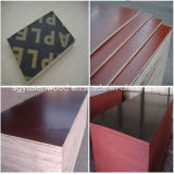 1220*2440mm Cheap Price Brown Black Film Faced Plywood