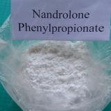 Nandrolone Phenylpropionate порошка Npp более дешевый стероидный сырцовый для культуриста