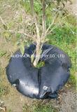 나무를 위한 급수 저축 느린 방출 본래 양수막