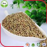 100% высушенная зеленая чечевица 3-5mm