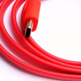 Qualitäts-Daten-Typ c-Kabel
