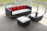 Напольные мебель & софа патио (C805)