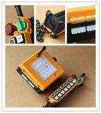 Regulador sin hilos de Radio Remote de la serie F21