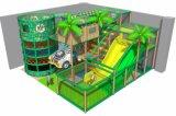 Jungle Cheer di divertimenti a tema parco giochi al coperto apparecchiature 20130222-020 - C - 1