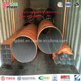 TP304/304L/316/316L de roestvrije Naadloze Pijp van het Staal