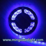 Супер яркие 12V делают прокладку водостотьким света 5050 300SMD RGB СИД