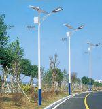Luz de calle de las exportaciones IP65 20W 30W-200W de China en luz de calle solar