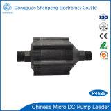 Pompe de circulation micro d'eau chaude de C.C avec la pression