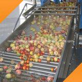 Het rood kweekt Machine van de Transportband van het Fruit van het Type van Riem de Sorterende