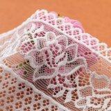 Form-Entwurfs-Polyesterbeige wasserlösliche Guangzhou-Spitze