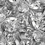 Tela de matéria têxtil do poliéster da cópia de Digitas (TLD-0113)