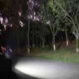 iluminação de controle remoto solar do jardim da rua da luz de inundação do diodo emissor de luz 20W