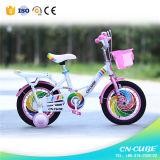 자전거 공급자 또는 제조가 세륨에 의하여 승인된 아이들 자전거에 의하여 농담을 한다