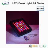 120 W LED wachsen hell mit Dimmer und Timer (Objektiv)